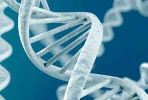 Наш социальный статус влияет на гены и здоровье.